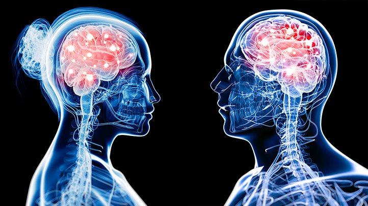 რა განსხვავებაა ლიბერალების და კონსერვატორების ტვინებს შორის?