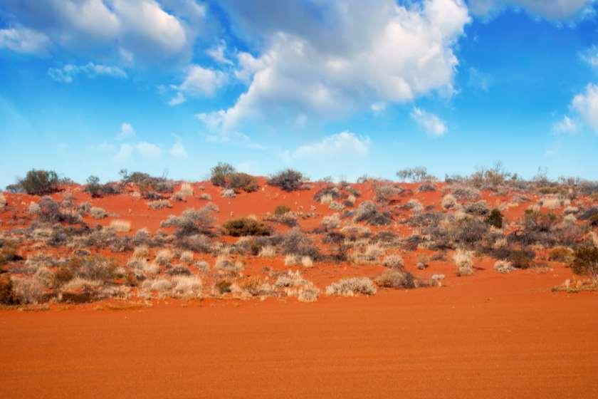 ავსტრალიის უდაბნოში ქალმა წყლისა და საკვების გარეშე 12 დღეს გაძლო