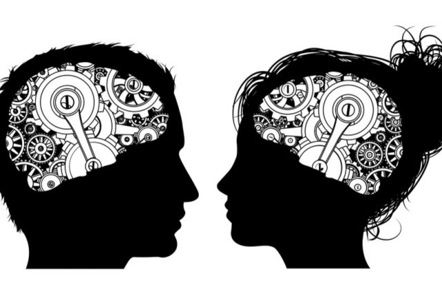 ქალის და კაცის ტვინებს შორის მთავარი სხვაობა დაადგინეს