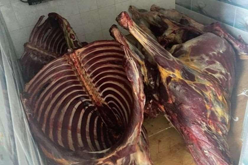 სურსათის სააგენტომ ნახევარ ტონაზე მეტი ცხენისა და საქონლის საკვებად უვარგისი ხორცი ამოიღო