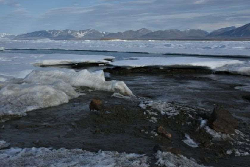 მეცნიერებმა ჩრდილოეთის უკიდურესი კუნძული აღმოაჩინეს