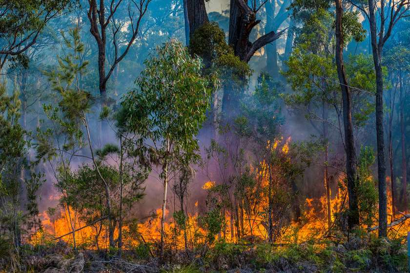 ყველა იმაზე საუბრობს, რომ გლობალური დათბობის გამო ტყეები უფრო ხშირად იწვის. თუმცა რამდენიმედღიანი ხანძრების შემდეგ რატომ იწყება წყალდიდობა? რა არის წლევანდელი ზაფხულის სტიქიური უბედურებების ქრონიკის მიზეზი?